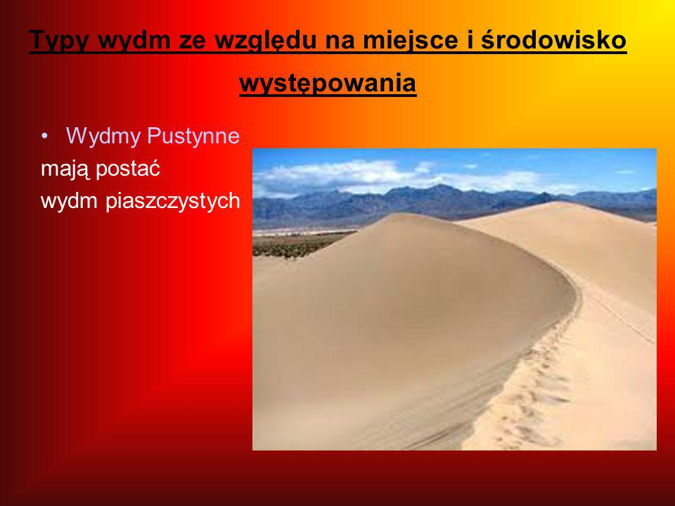Typy wydm ze względu na miejsce i środowisko występowania