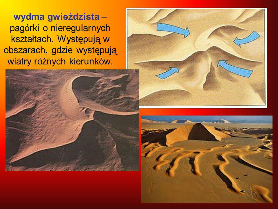 wydma gwieździsta – pagórki o nieregularnych kształtach