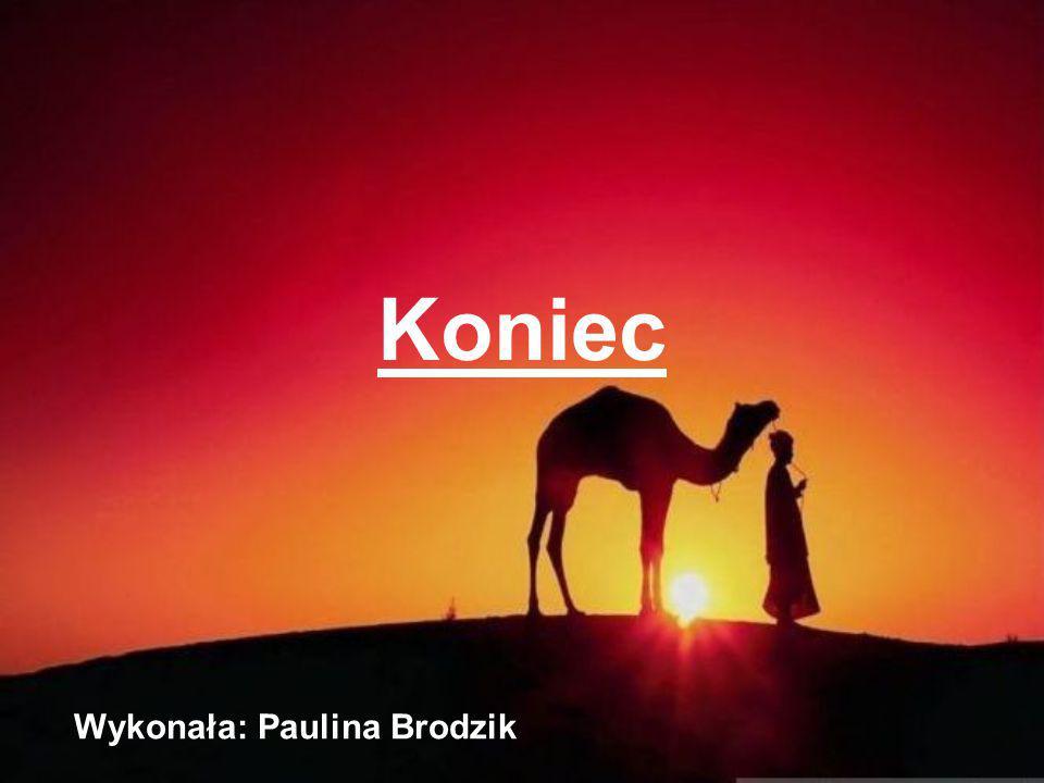 Wykonała: Paulina Brodzik