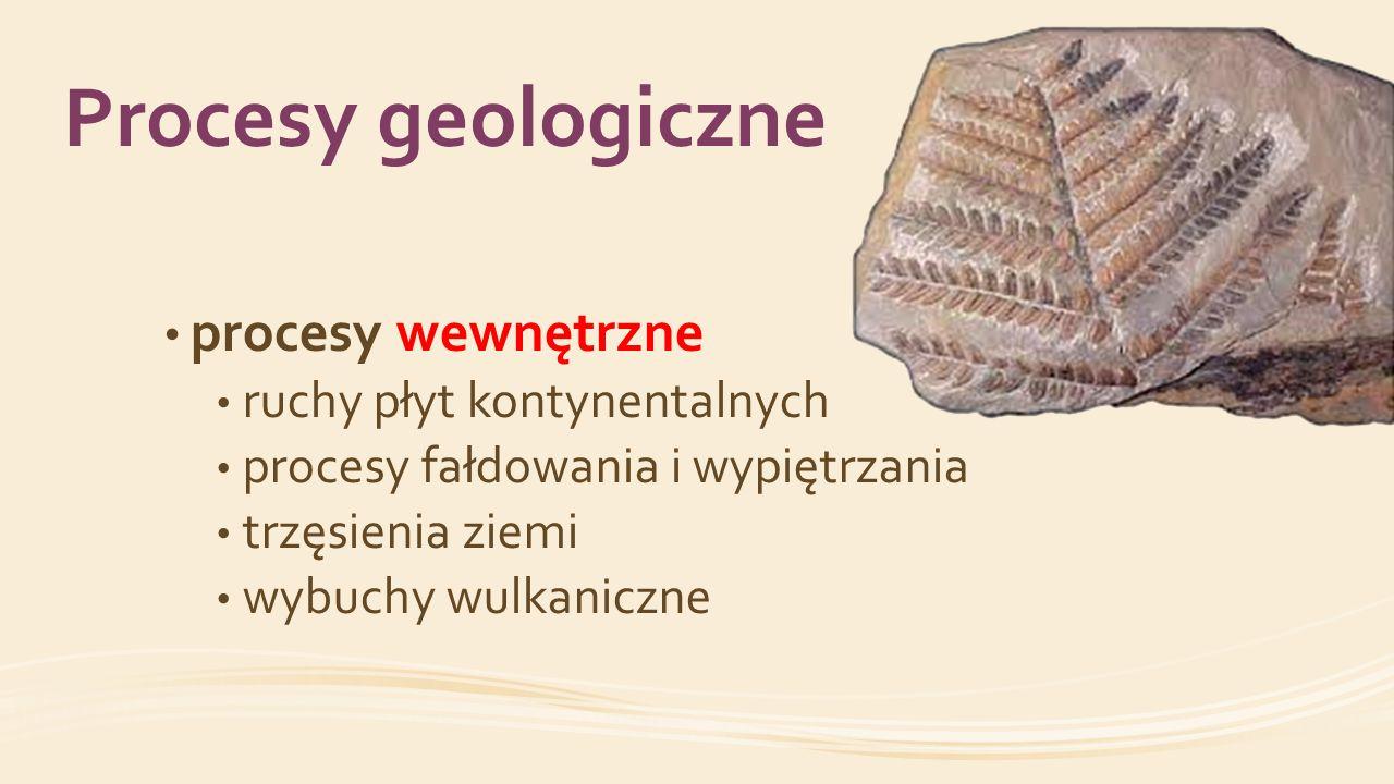 Procesy geologiczne procesy wewnętrzne ruchy płyt kontynentalnych
