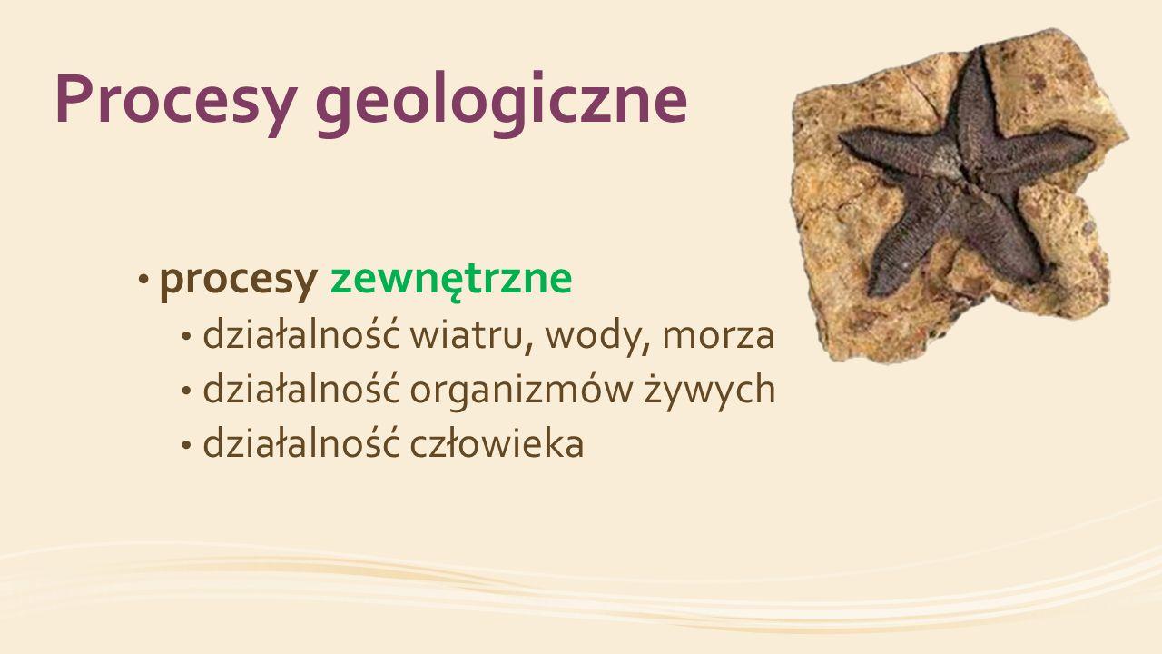 Procesy geologiczne procesy zewnętrzne działalność wiatru, wody, morza