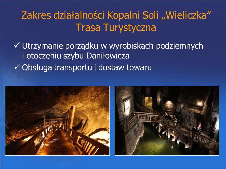 """Zakres działalności Kopalni Soli """"Wieliczka Trasa Turystyczna"""