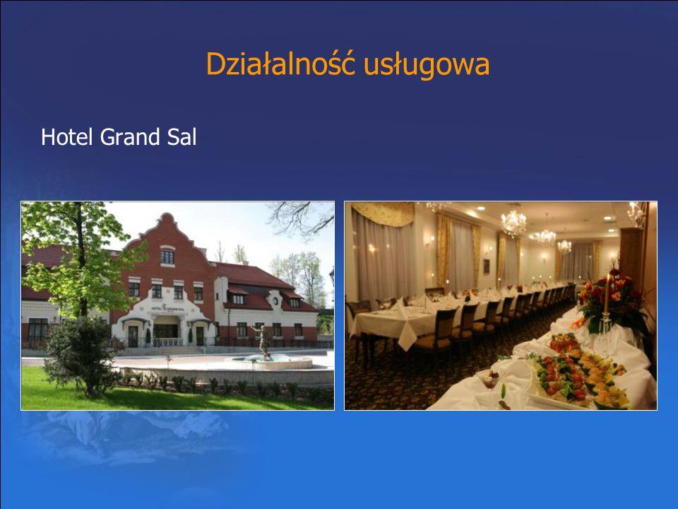 Działalność usługowa Hotel Grand Sal