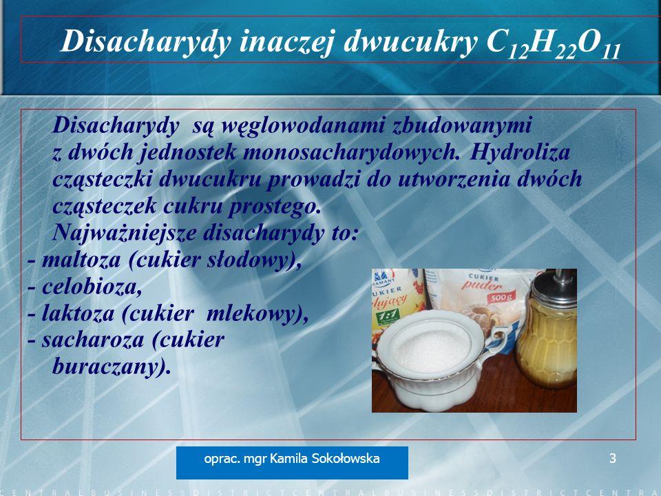 Disacharydy inaczej dwucukry C12H22O11