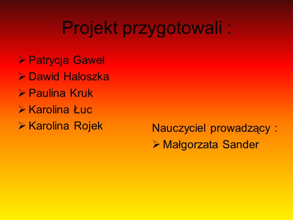 Projekt przygotowali :