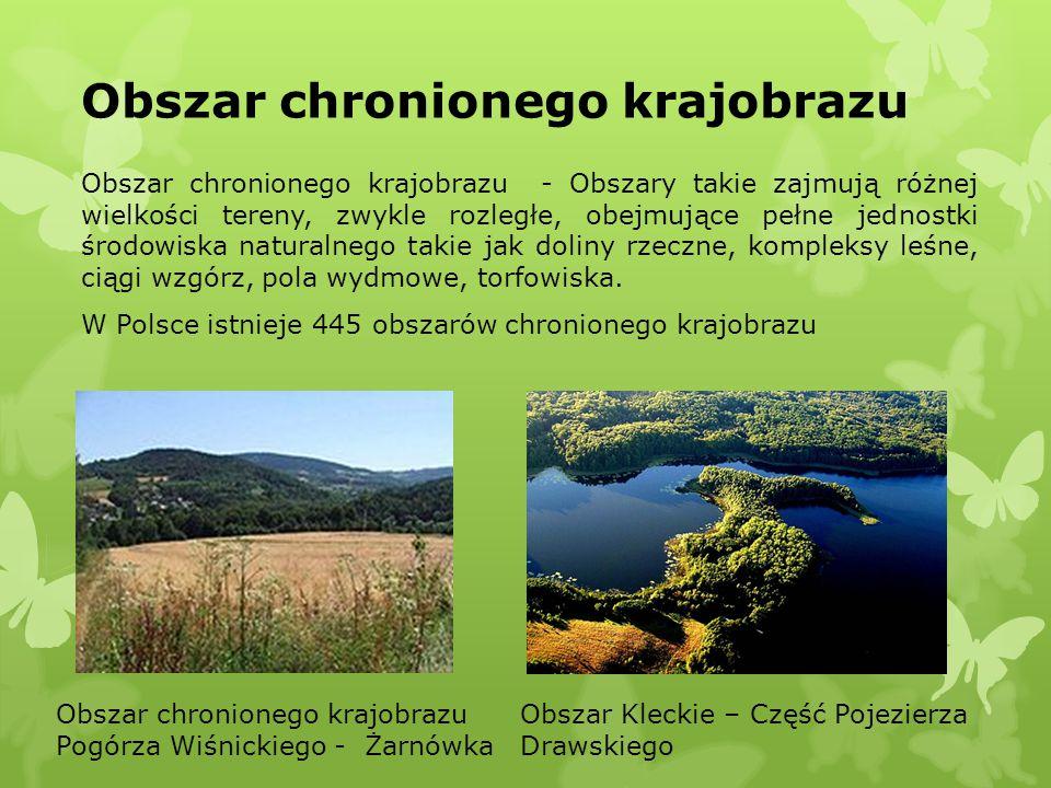 Obszar chronionego krajobrazu