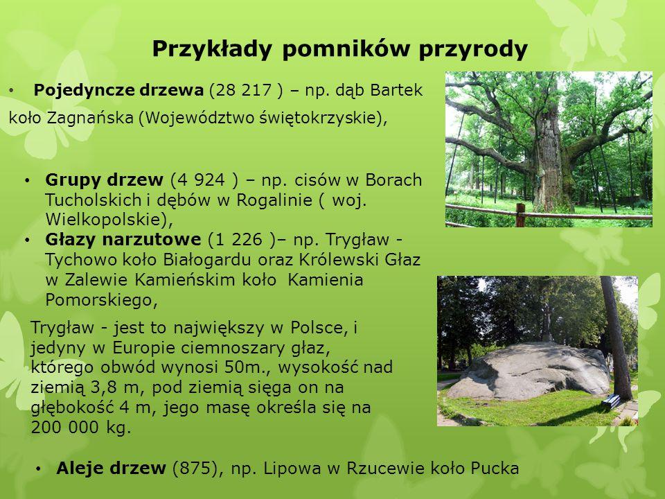 Przykłady pomników przyrody