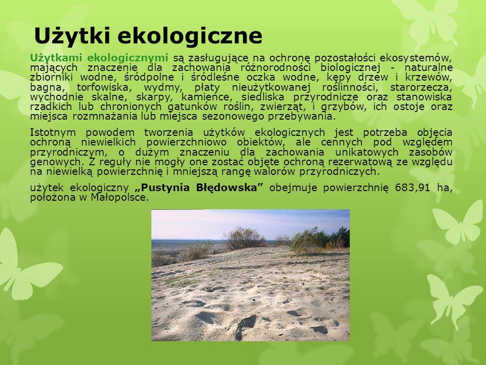 Użytki ekologiczne