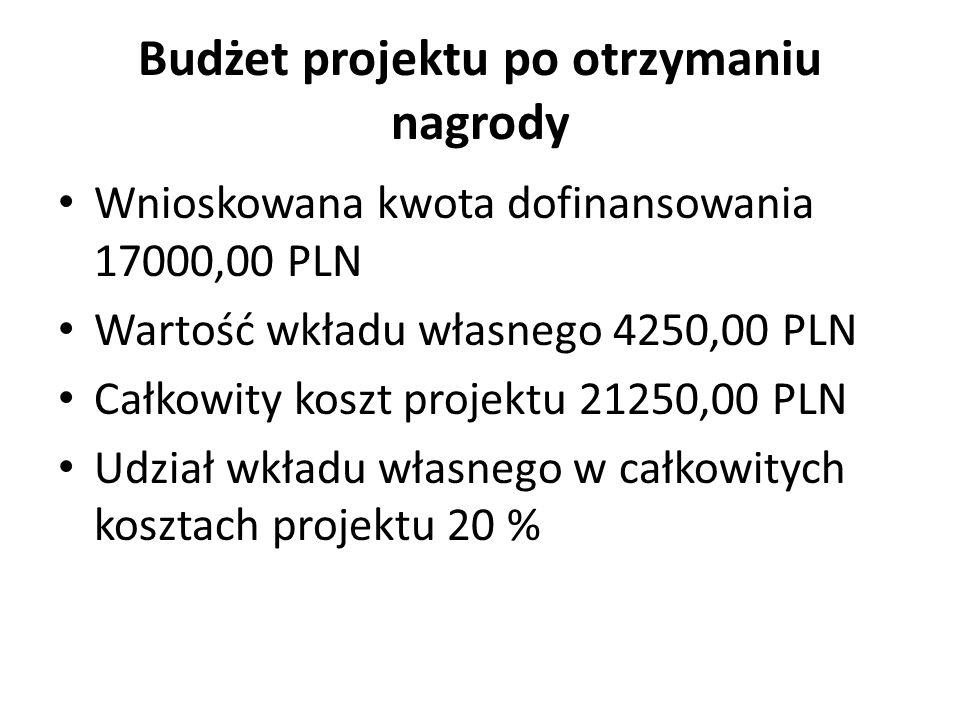 Budżet projektu po otrzymaniu nagrody