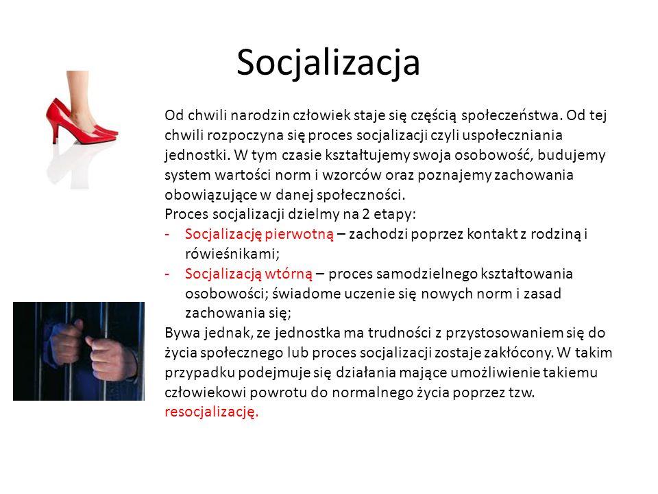Socjalizacja