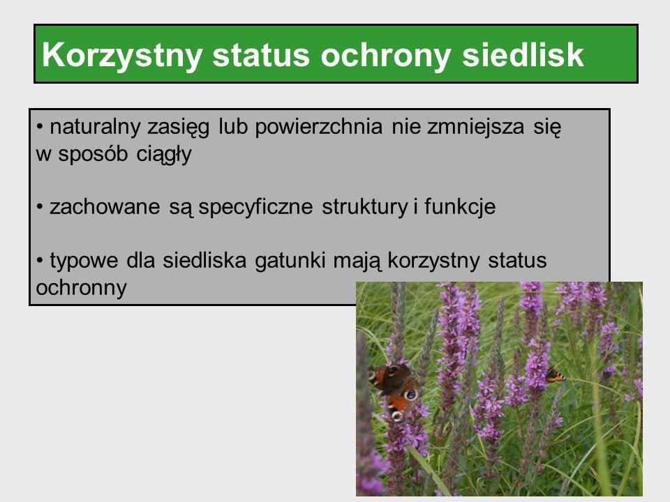 Korzystny status ochrony siedlisk