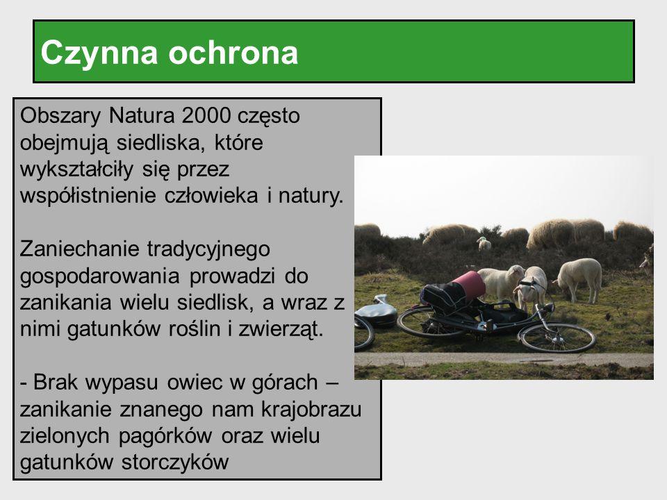 Czynna ochrona Obszary Natura 2000 często obejmują siedliska, które wykształciły się przez współistnienie człowieka i natury.