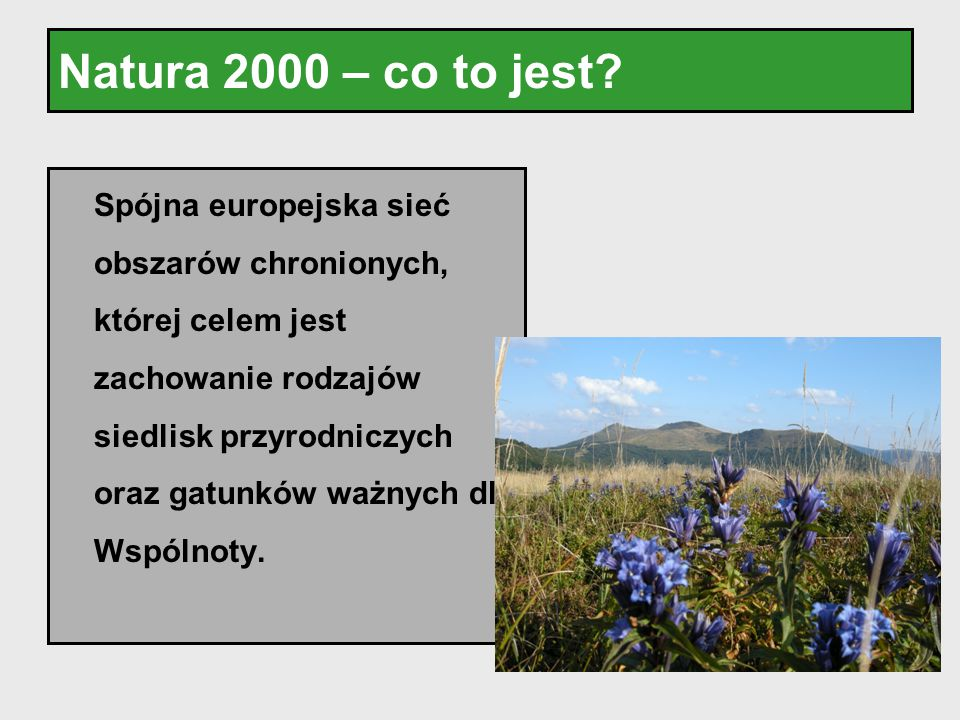 Natura 2000 – co to jest
