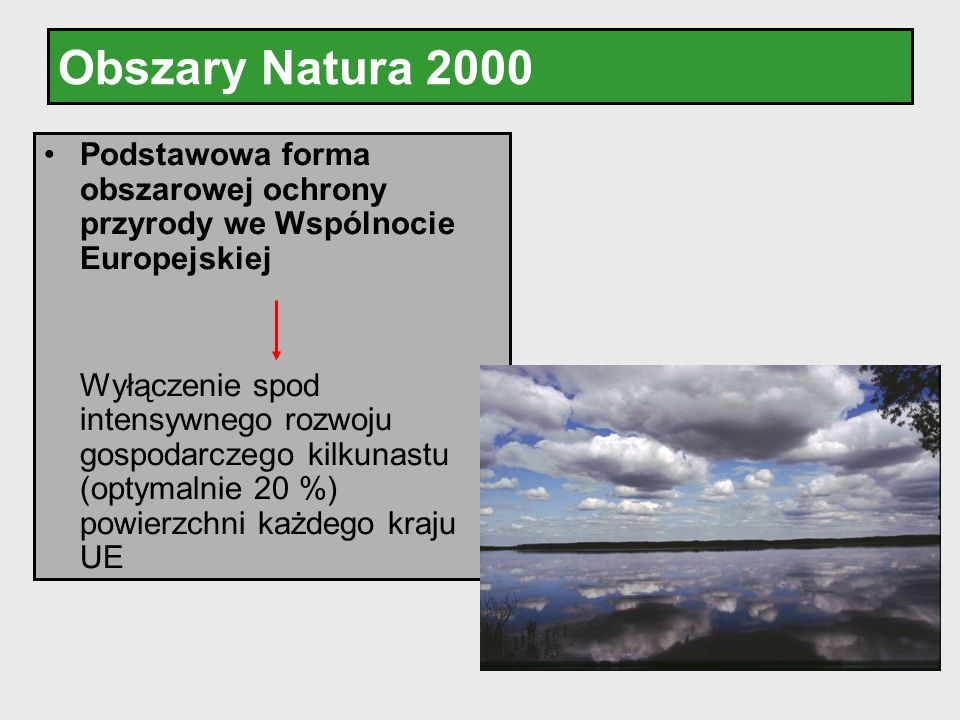 Obszary Natura 2000 Podstawowa forma obszarowej ochrony przyrody we Wspólnocie Europejskiej.