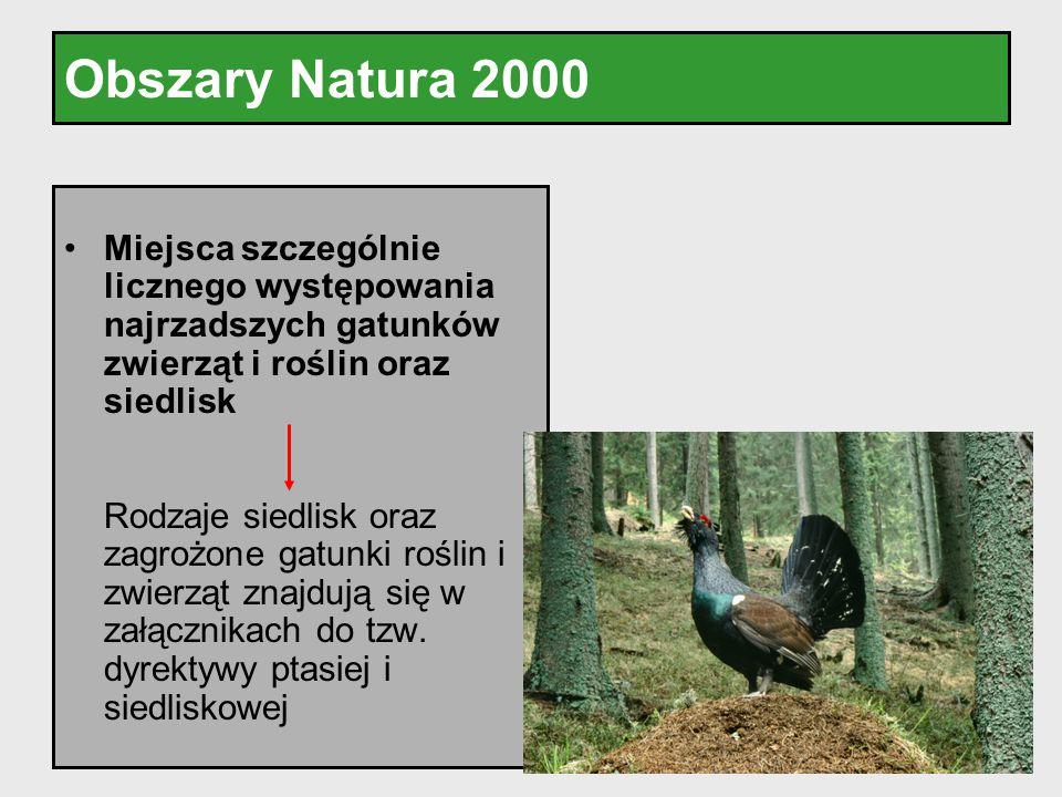 Obszary Natura 2000 Miejsca szczególnie licznego występowania najrzadszych gatunków zwierząt i roślin oraz siedlisk.
