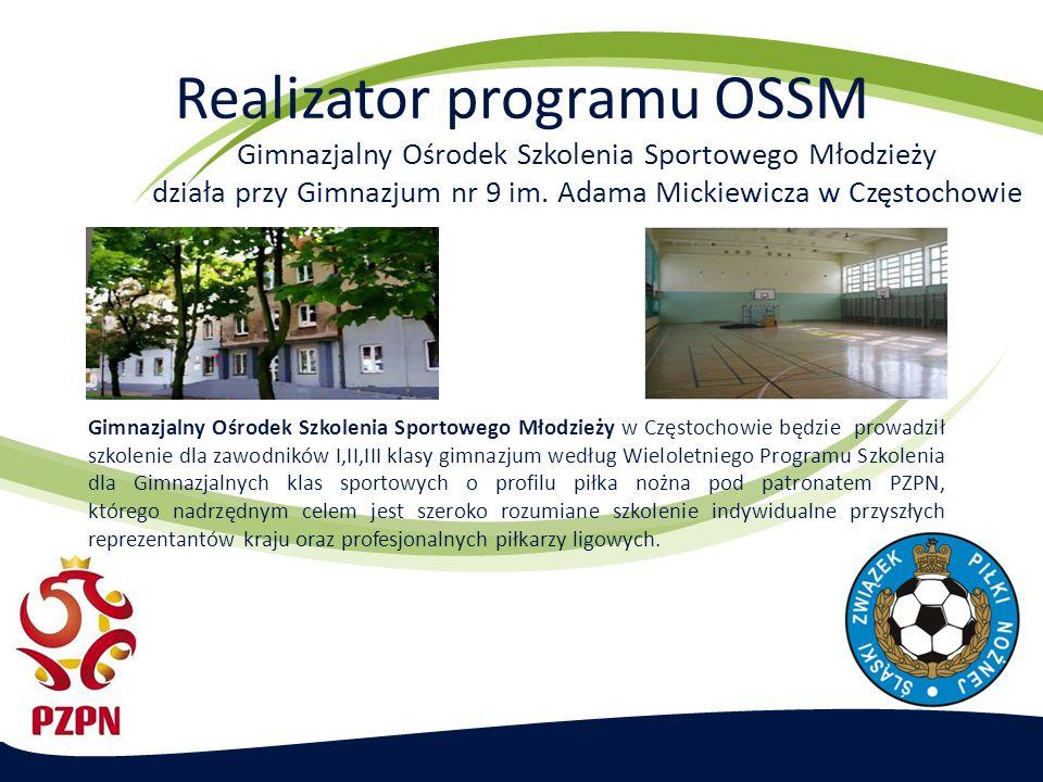 Realizator programu OSSM
