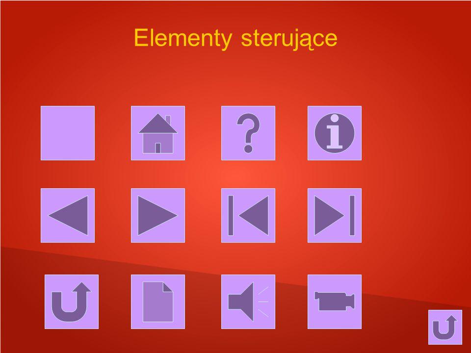 Elementy sterujące
