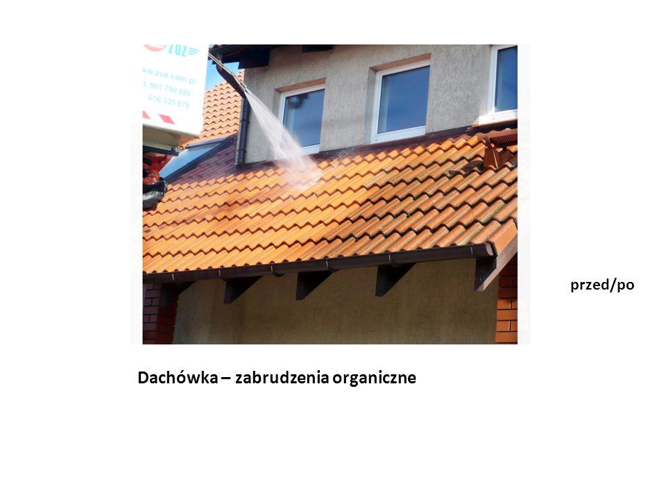 Dachówka – zabrudzenia organiczne