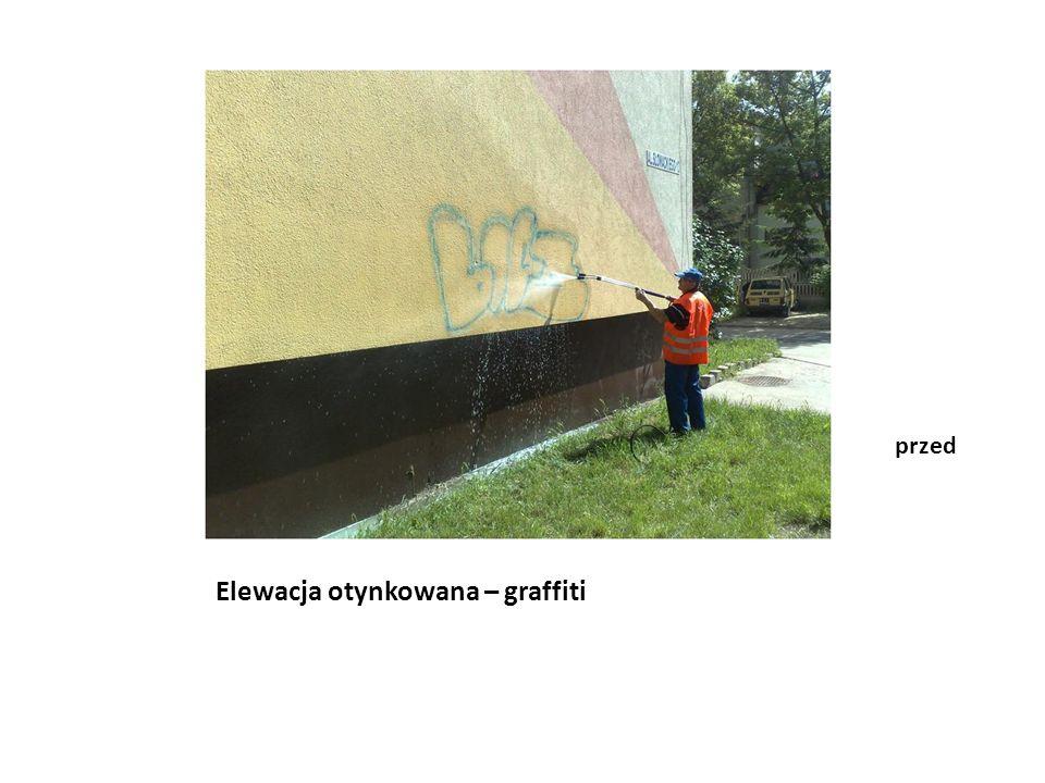 Elewacja otynkowana – graffiti