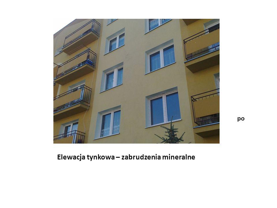Elewacja tynkowa – zabrudzenia mineralne