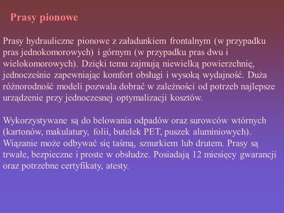 Prasy pionowe