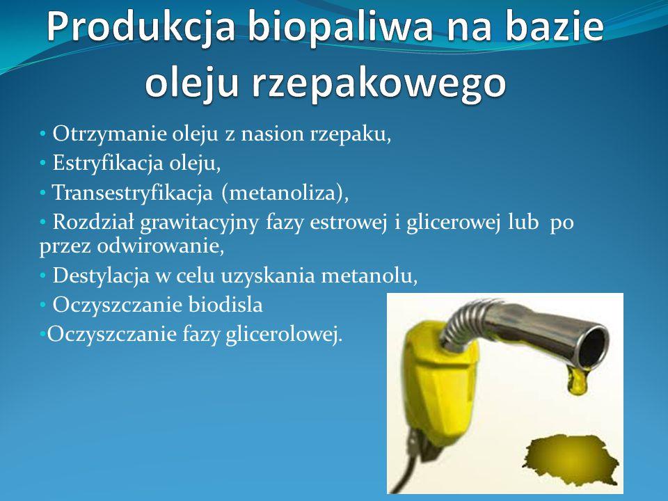 Produkcja biopaliwa na bazie oleju rzepakowego