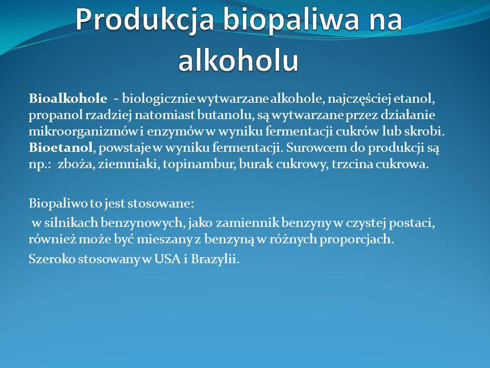 Produkcja biopaliwa na alkoholu