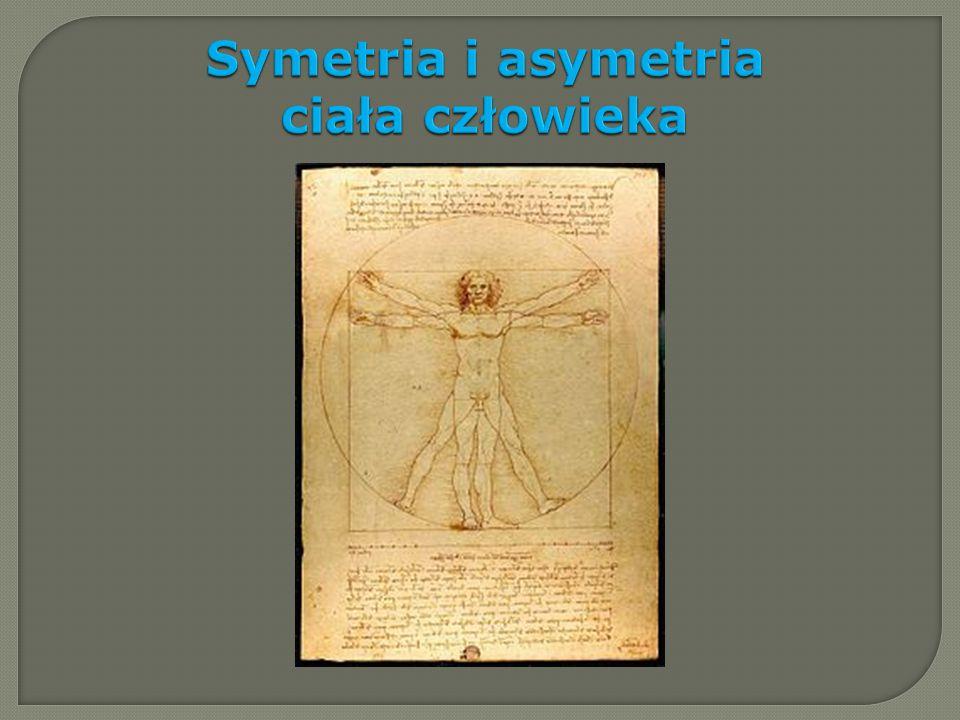 Symetria i asymetria ciała człowieka