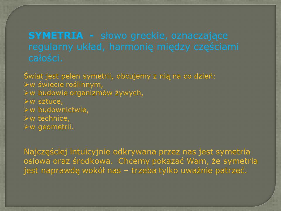 SYMETRIA - słowo greckie, oznaczające regularny układ, harmonię między częściami całości.