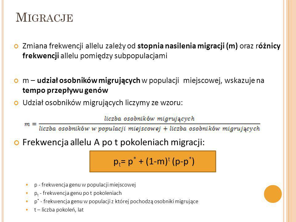 Migracje Frekwencja allelu A po t pokoleniach migracji: