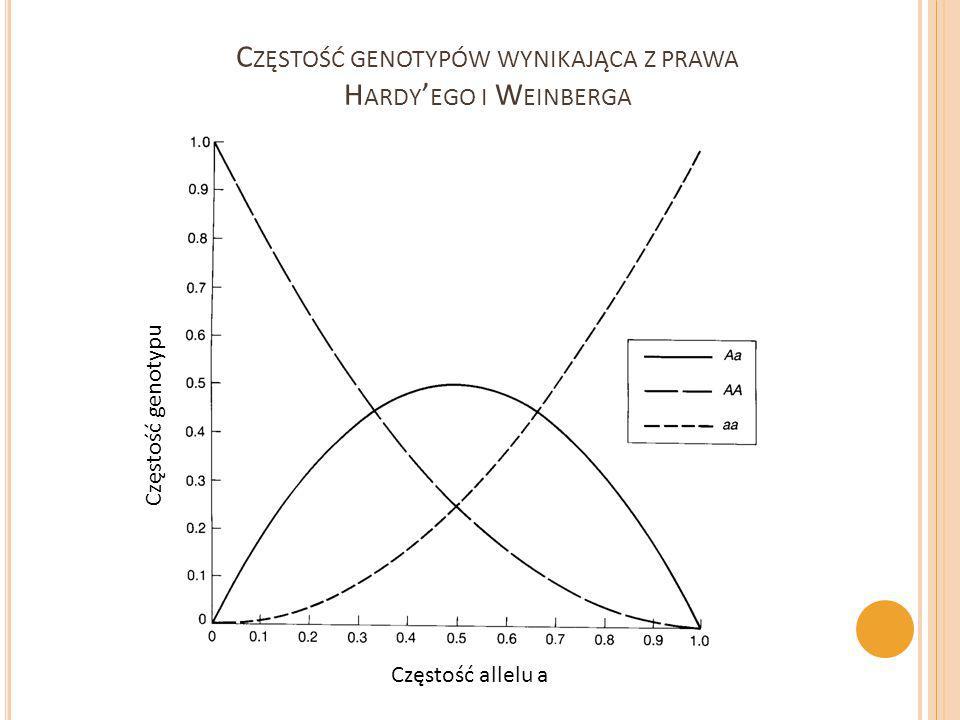 Częstość genotypów wynikająca z prawa Hardy'ego i Weinberga