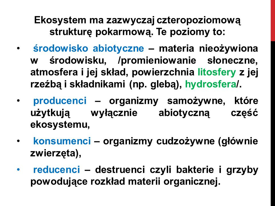 Ekosystem ma zazwyczaj czteropoziomową strukturę pokarmową