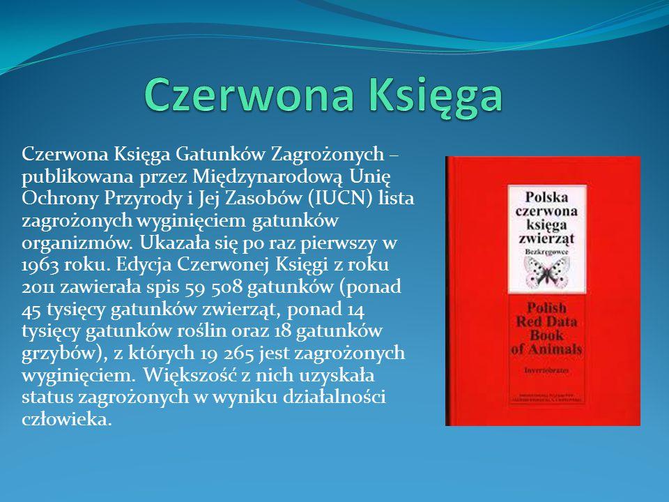Czerwona Księga
