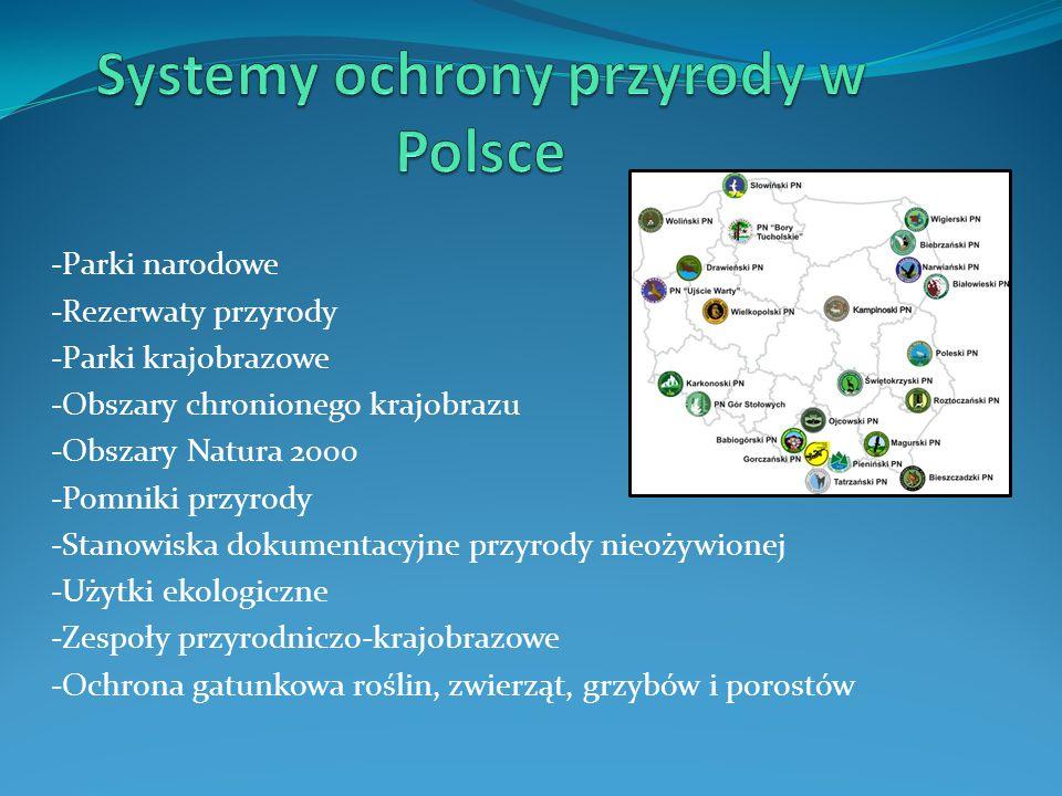 Systemy ochrony przyrody w Polsce