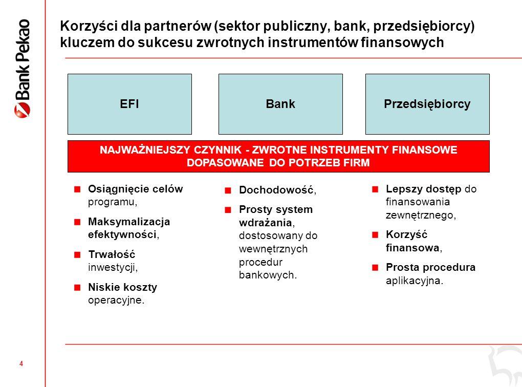 Szeroki dostęp do finansowania dla firm w programach kredytowych z gwarancją EFI
