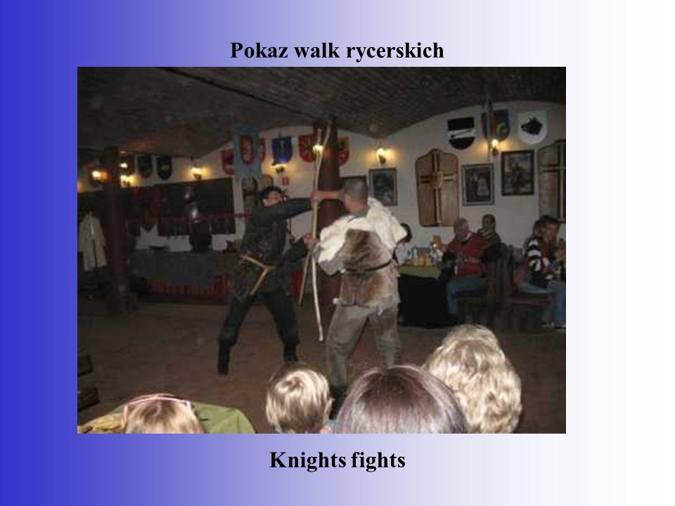 Pokaz walk rycerskich Knights fights