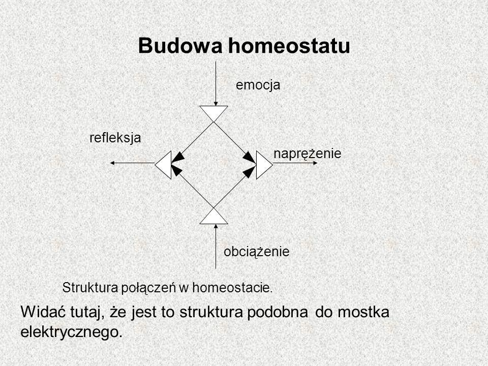 Budowa homeostatu emocja. obciążenie. naprężenie. refleksja. Struktura połączeń w homeostacie.