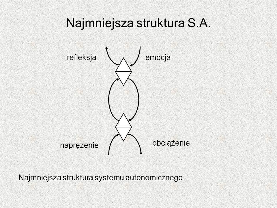 Najmniejsza struktura S.A.