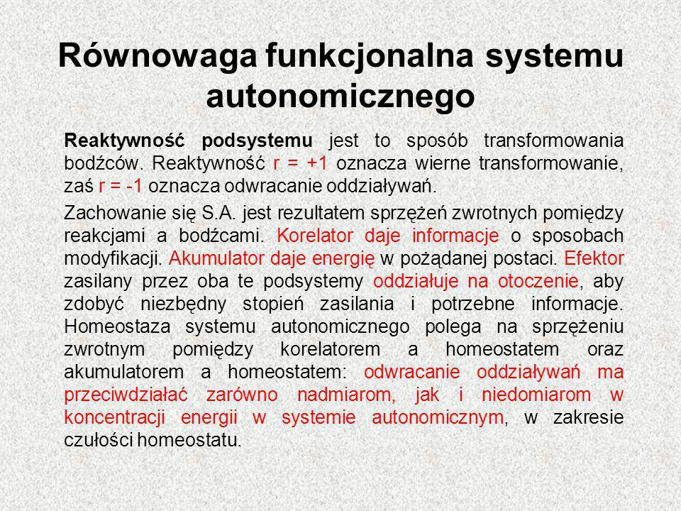 Równowaga funkcjonalna systemu autonomicznego