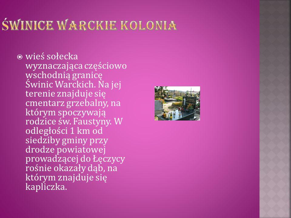 Świnice Warckie Kolonia