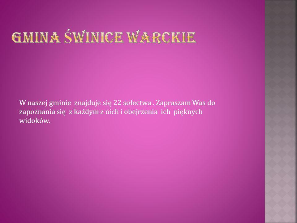 Gmina Świnice Warckie