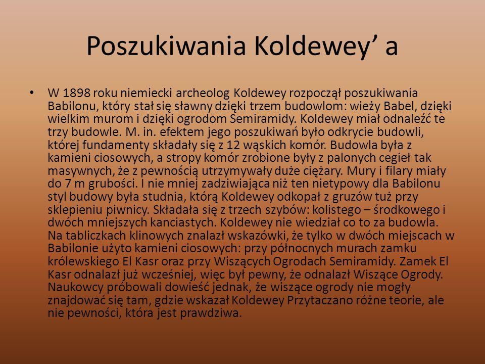 Poszukiwania Koldewey' a