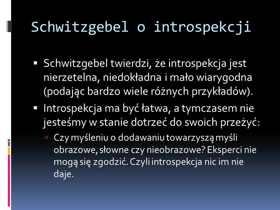 Schwitzgebel o introspekcji