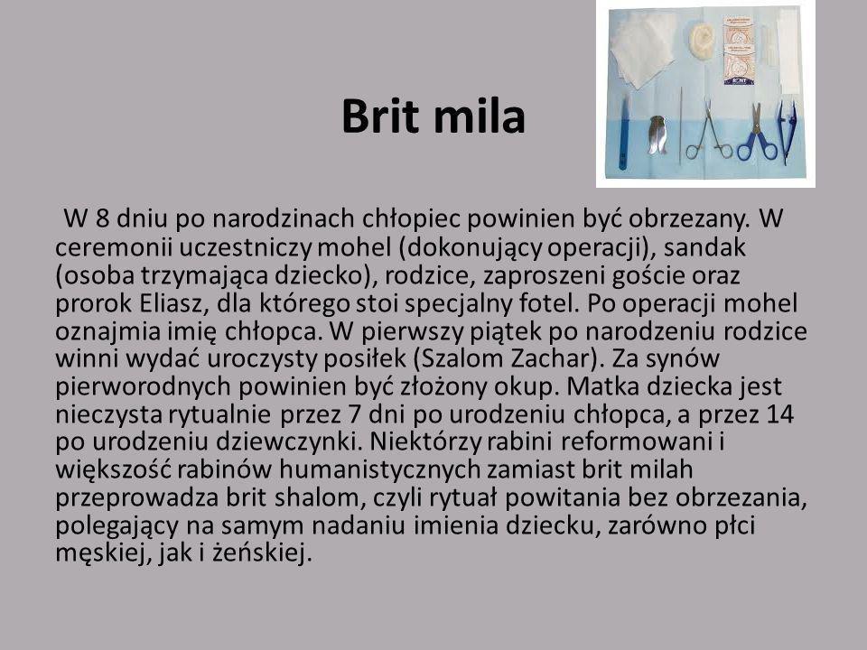 Brit mila