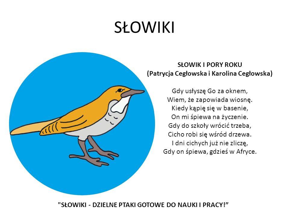 SŁOWIKI SŁOWIK I PORY ROKU (Patrycja Cegłowska i Karolina Cegłowska)