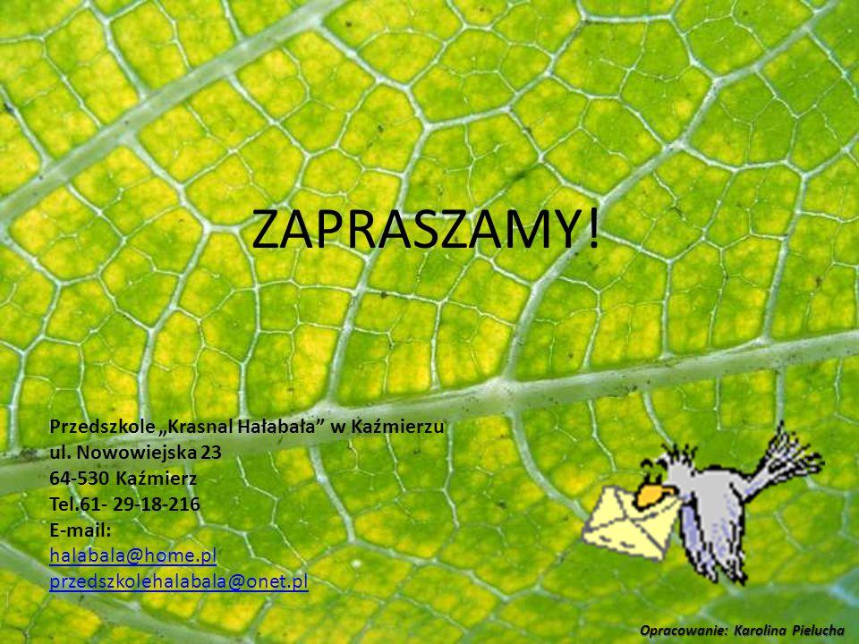 """ZAPRASZAMY! Przedszkole """"Krasnal Hałabała w Kaźmierzu"""