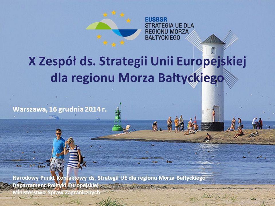 X Zespół ds. Strategii Unii Europejskiej dla regionu Morza Bałtyckiego