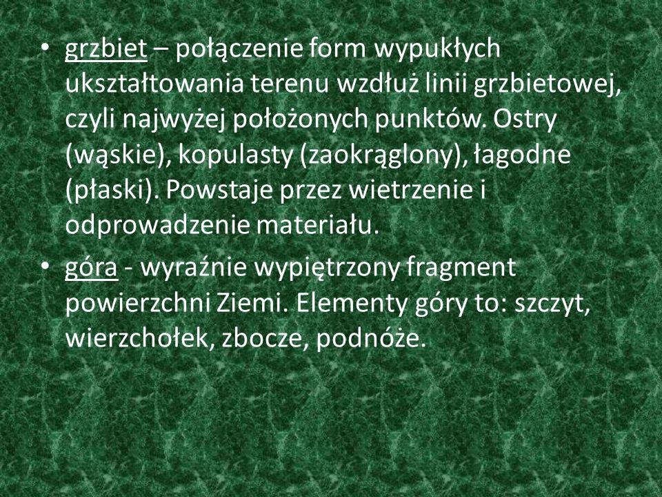grzbiet – połączenie form wypukłych ukształtowania terenu wzdłuż linii grzbietowej, czyli najwyżej położonych punktów. Ostry (wąskie), kopulasty (zaokrąglony), łagodne (płaski). Powstaje przez wietrzenie i odprowadzenie materiału.