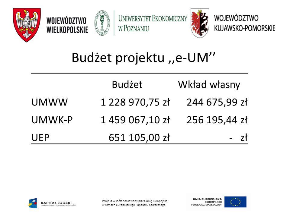 Budżet projektu ,,e-UM''