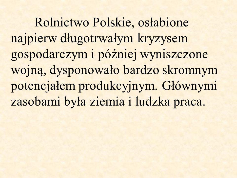 Rolnictwo Polskie, osłabione najpierw długotrwałym kryzysem gospodarczym i później wyniszczone wojną, dysponowało bardzo skromnym potencjałem produkcyjnym.